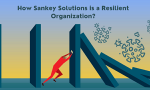 How Sankey Solutions is a Resilient Organization (1)